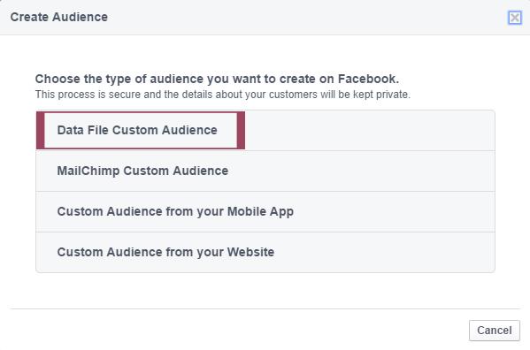 Data File Custom Audience